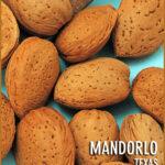 Mandorlo_Texas_54115a65efb35
